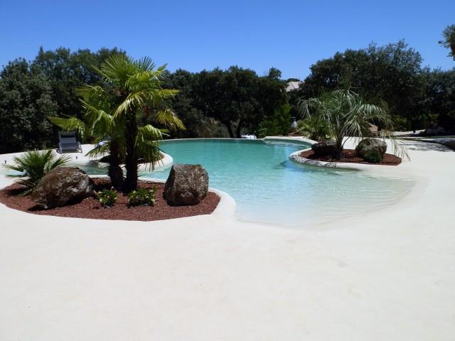 Diseo de piscinas naturales amazing casa piscina piedras for Diseno de piscinas pdf
